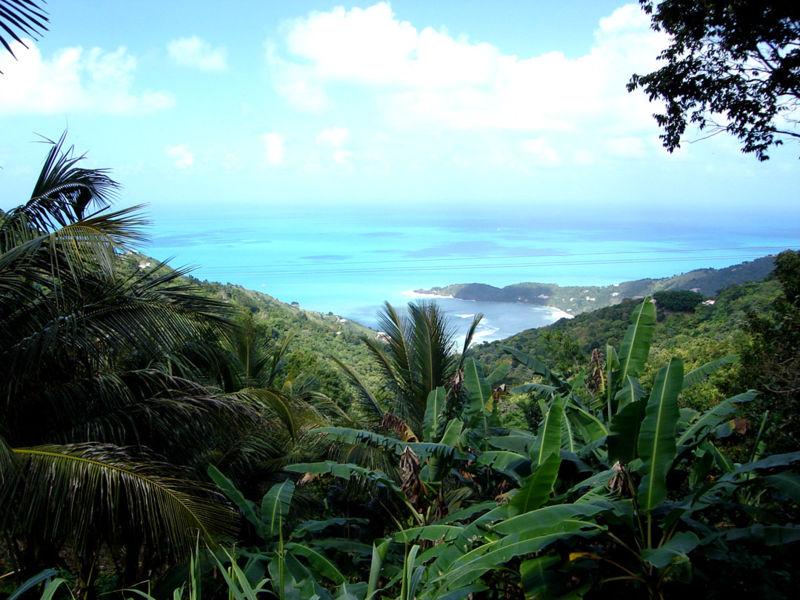 800px-Tortola