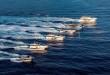 flotta-fg-novita-2017-303-corr
